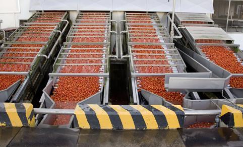 Ricezione - Macchine per Ricezione, lavaggio e trasporto