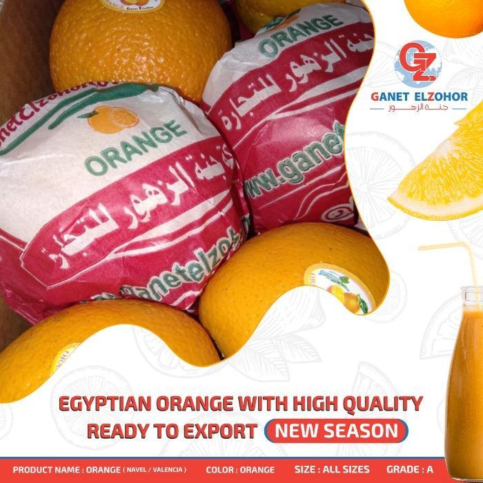 Orange - Organic