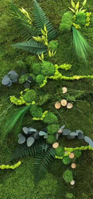 Murs Végétaux - null
