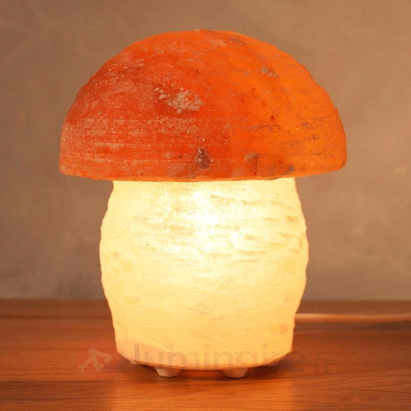 Superbe lampe de sel PILZ en forme de champignon - Lampes de sel