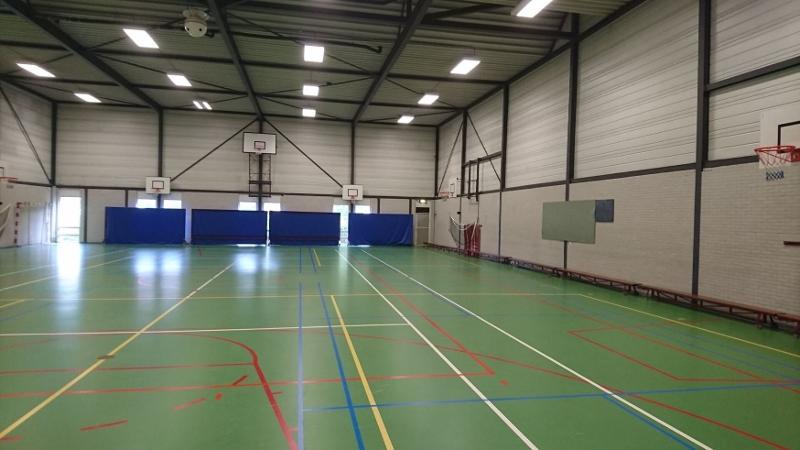 Badminton nets - null