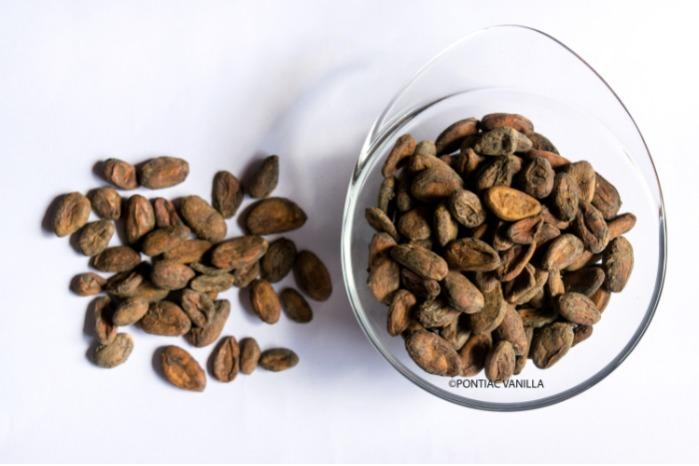 Fèves cacao de Madagascar non torréfiées -