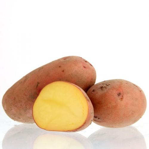 Potatoes - Red skin - LAURA