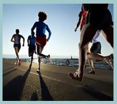 Wellness Sport - null