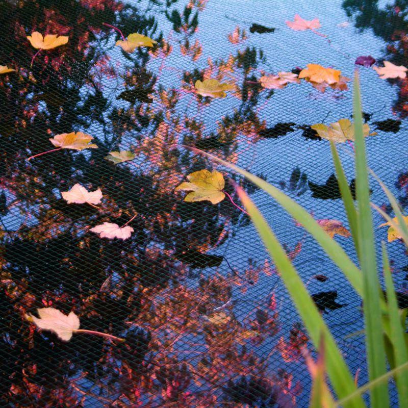 Anti animaux - Filet de protection pour bassin