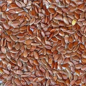 Flax Seed - Flax Seed Oil content is 40% Purity - 98%