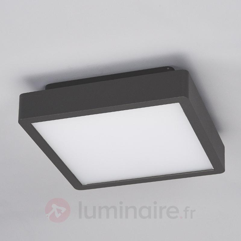 Plafonnier d'extérieur LED Talea carré - null