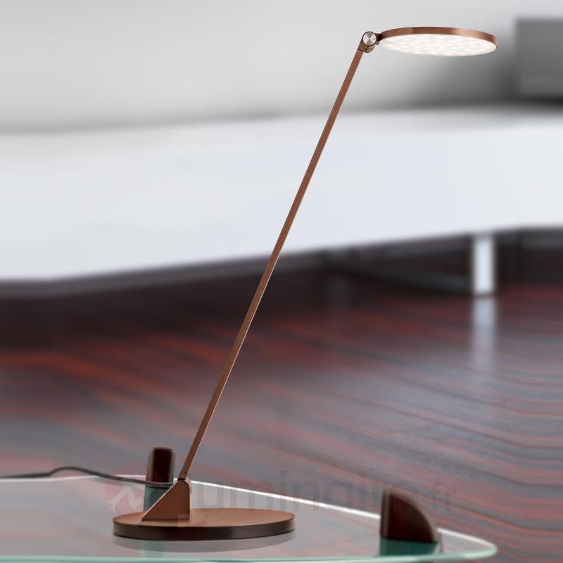 Lampe à poser LED Ayana, tête ronde, dimmable - Lampes de bureau LED