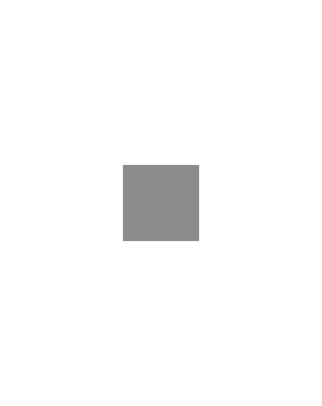 PP GRIS 7004 125G - PATES PIGMENTAIRES