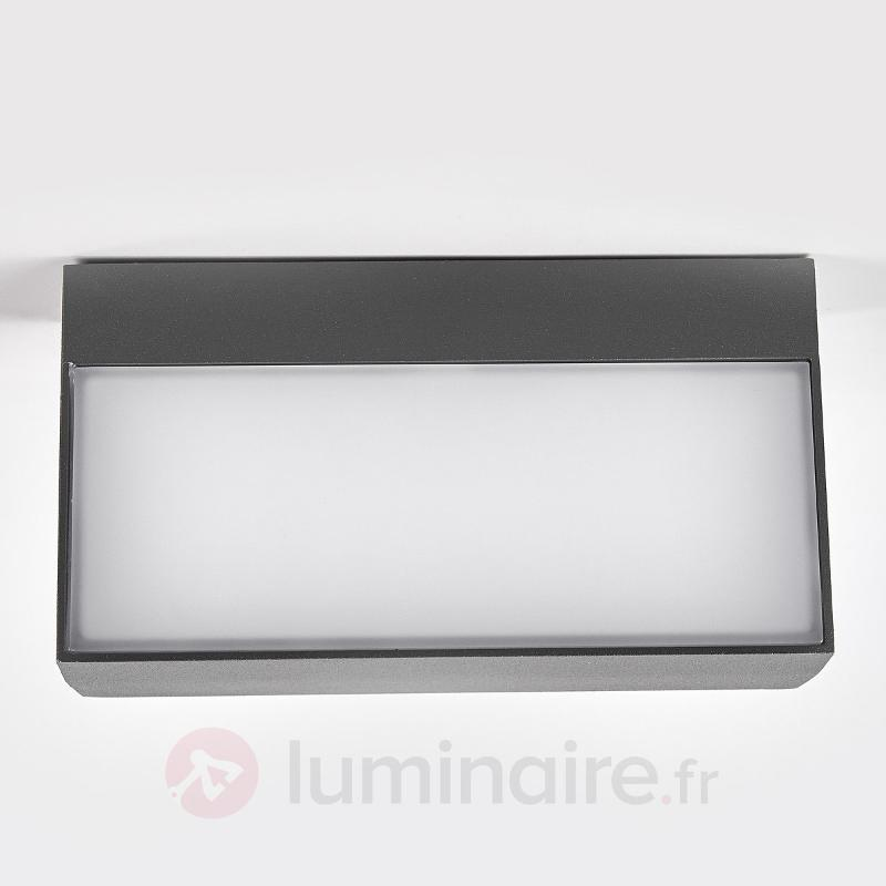 Lissi - applique d'extérieur LED de forme carrée - Appliques d'extérieur LED