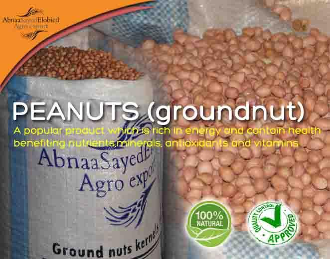 PEANUTS (GROUNDNUTS) - A popular product which is rich in energy and contain health benefiting nutrient