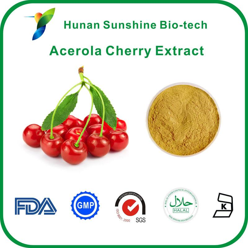 Acerola cherry extract - Fruit&Vegetable Powder