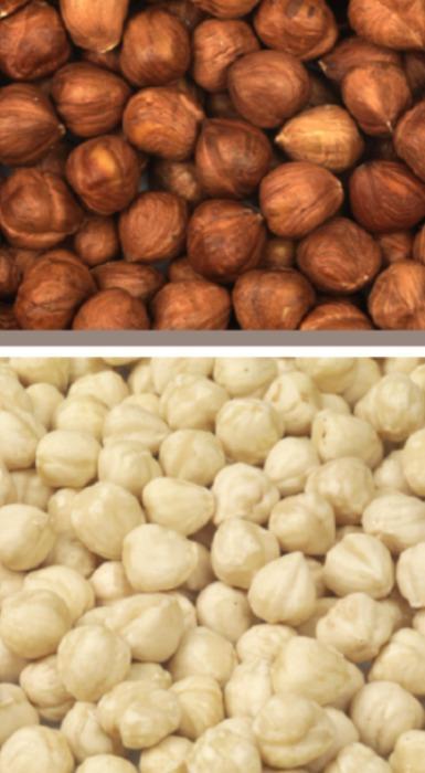 Hazelnuts Giresun and Turkey - Hazelnuts Giresun and Turkey