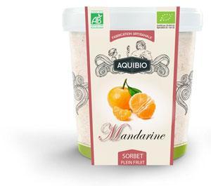 Sorbet BIO mandarine - Glace biologique