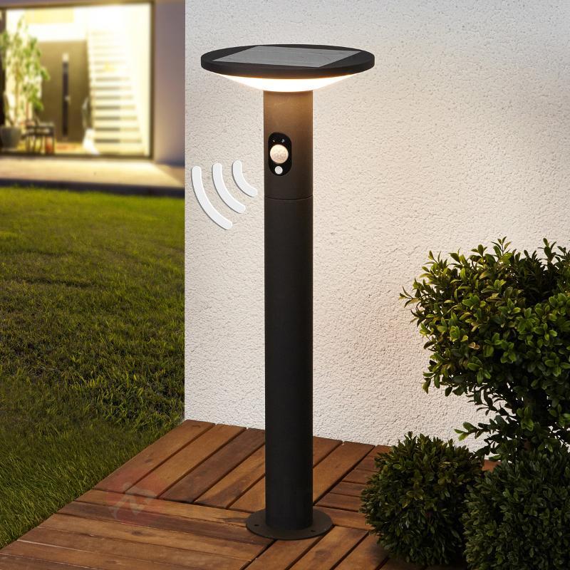 Borne lumineuse solaire Jersy, graphite, LED 60 cm - Lampes solaires avec détecteur