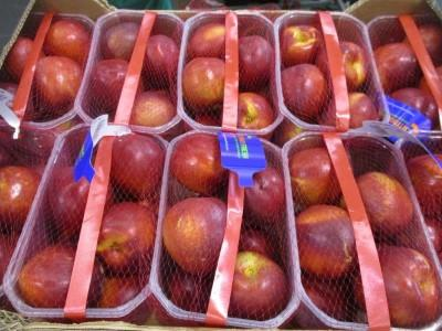 Frutta a nocciolo