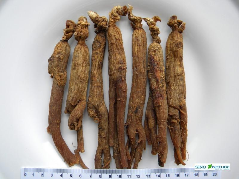 Ginseng root - Red whole