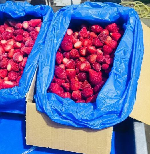"Frozen strawberries - "" Egyptian """