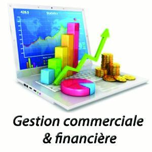 Gestion Commerciale et financière