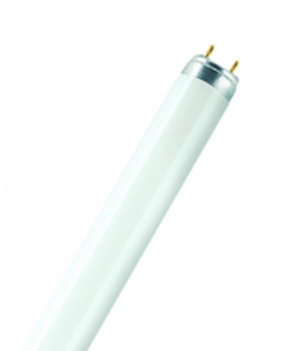 tubes TL 18 W cool white - Ampoules