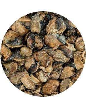 Fresh Frozen Snail Meat - Snail fillet