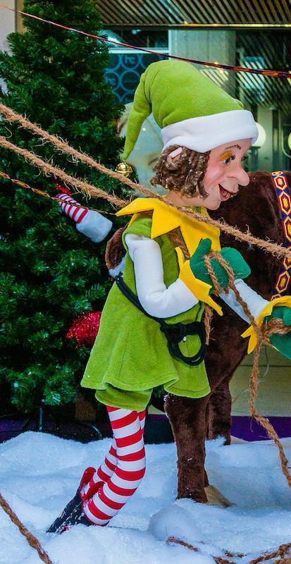 Christmas Elf with rope over his shoulder - null