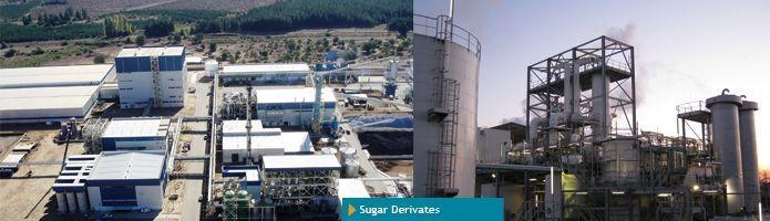 Sugar Derivates - null