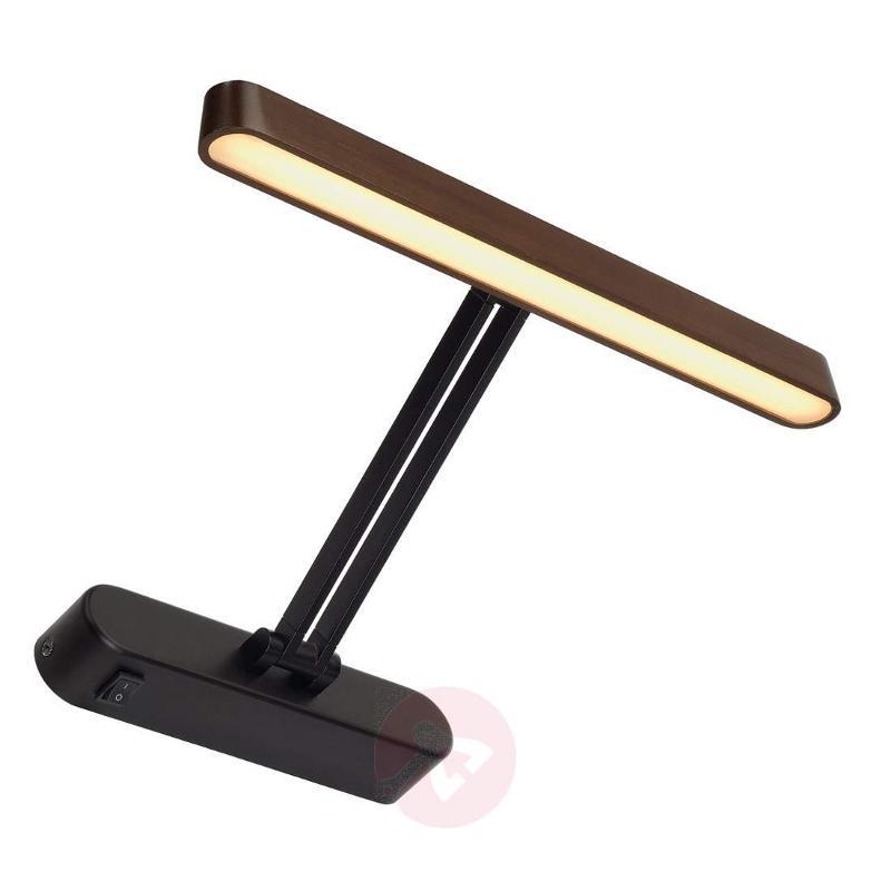 Adjustable Vincelli Display LED wall light - Picture Lights