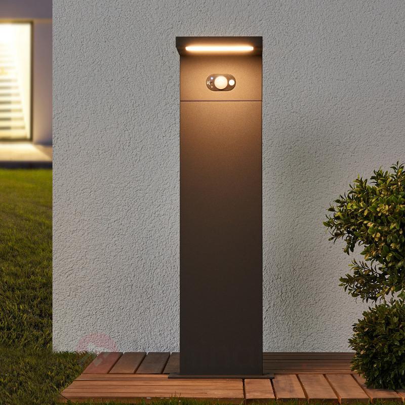 Borne lumineuse solaire LED Levi avec capteur - Lampes solaires avec détecteur