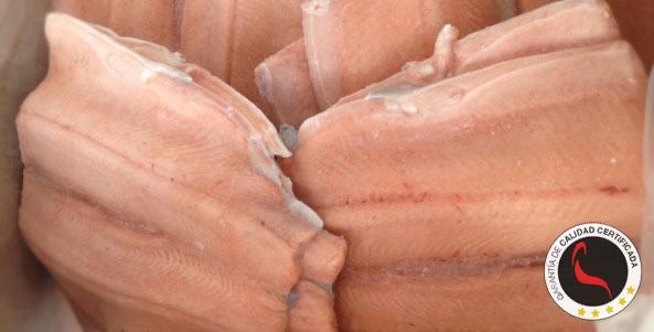 Trucha asalmonada