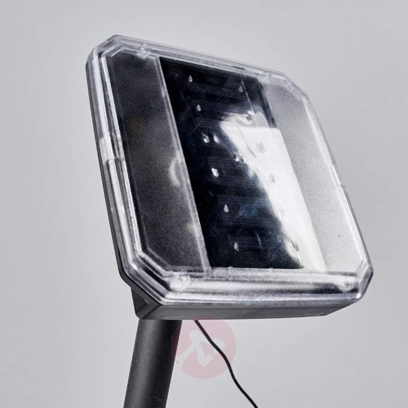 Solar spotlight Lylia with LEDs, 3-piece set - Spike Lights