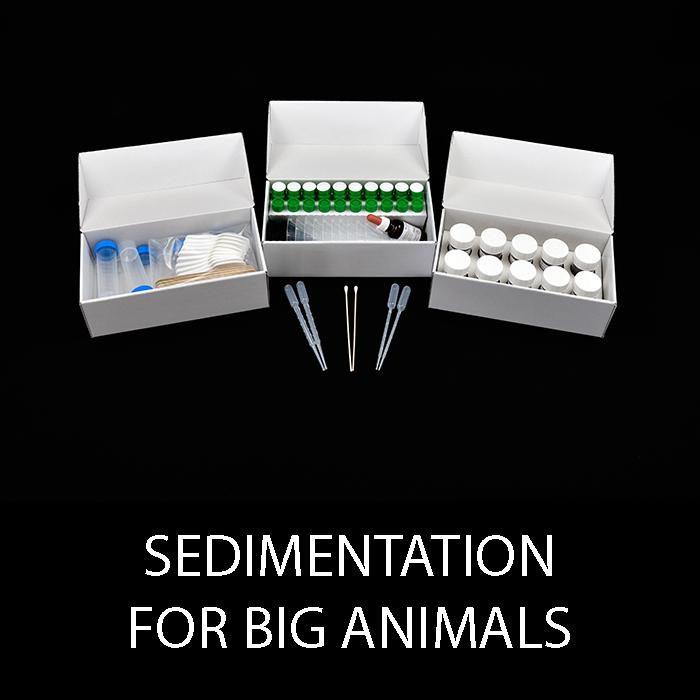 ECO Big Animals -