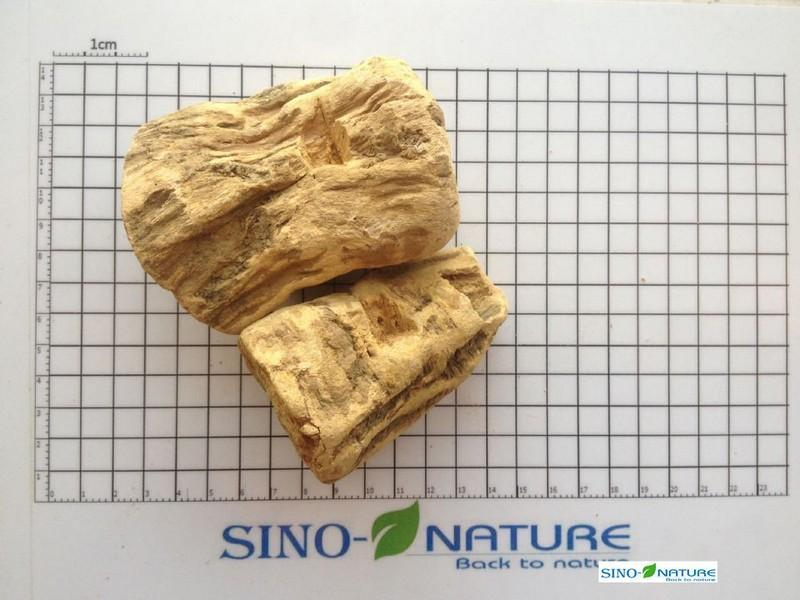 Rhubarb root peeled - Small common round 80%