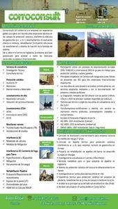 Comapny Capability Statement - Spanish Version