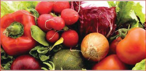 IQF Fruits & Vegetables - IQF