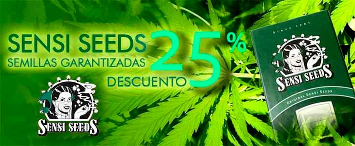 Semillas para el cultivo de marihuana