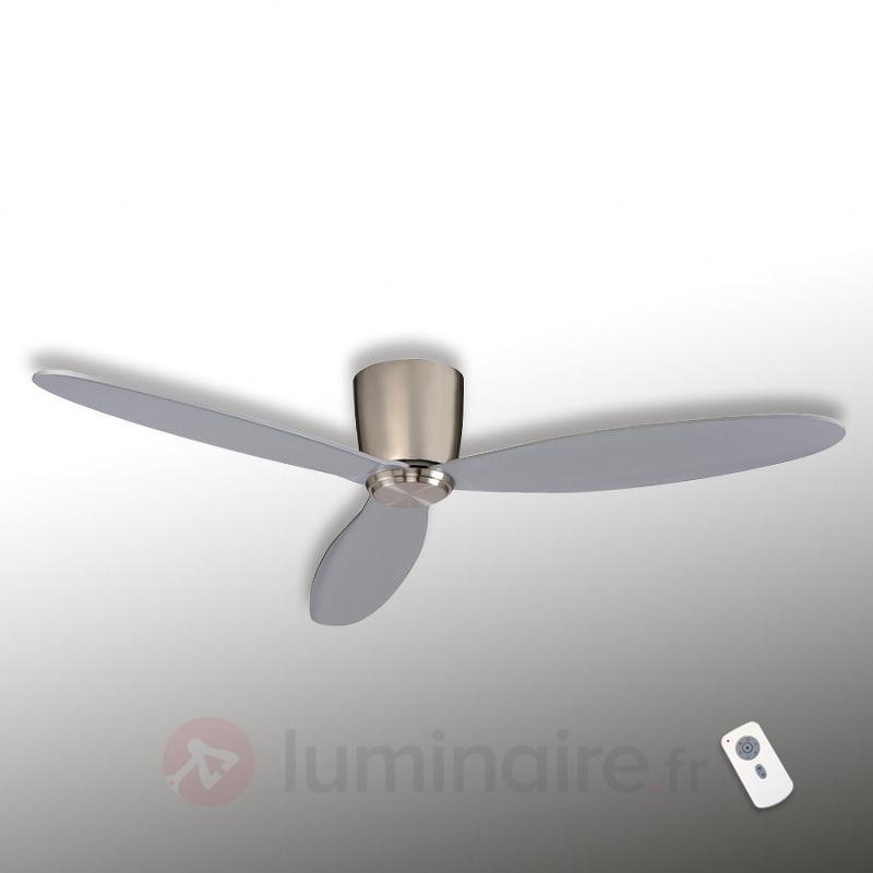 Eco Plano - Ventil. de plafond chromé/gris argenté - Ventilateurs de plafond modernes