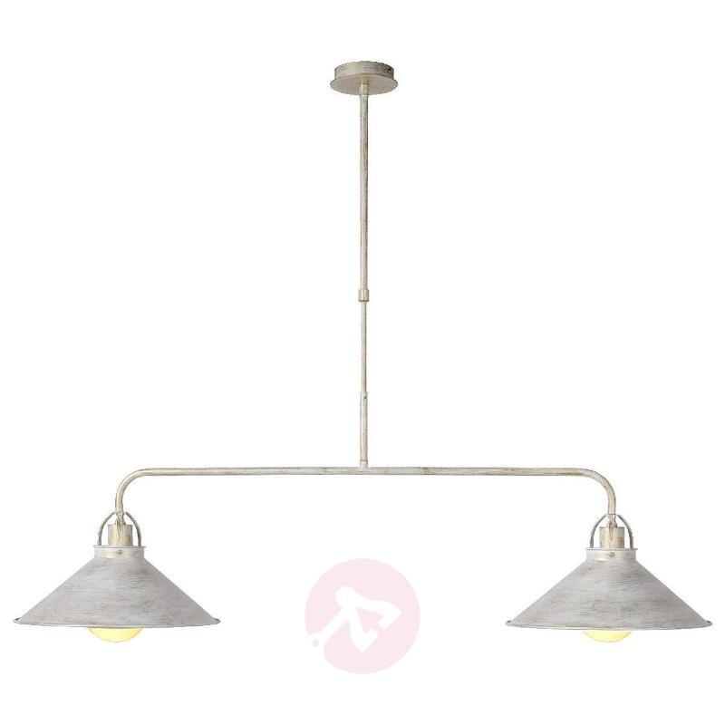 2-bulb Berkley hanging light - Pendant Lighting