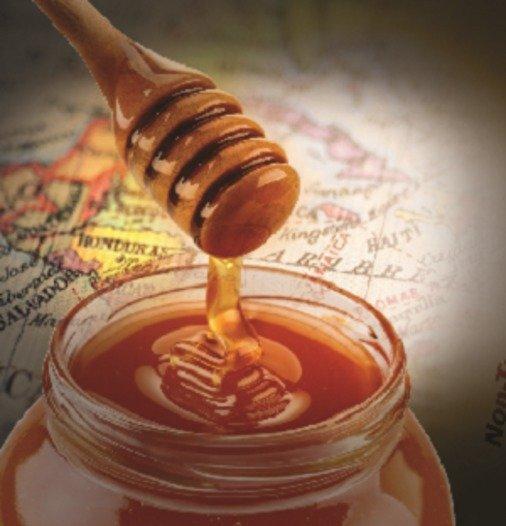 FoodScreener - Honey Profiling