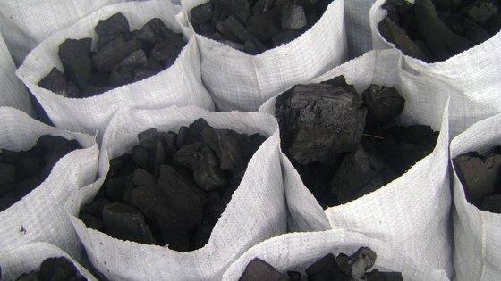 charbon de bois a vendre