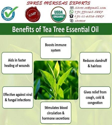 Organic Tea Tree Oil - USDA Organic