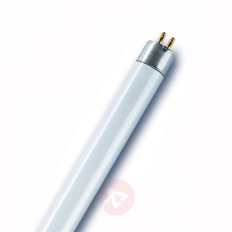 G5 T5 6W 830 Lumilux short fluorescent bulb - light-bulbs