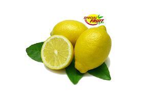 LIMONI - Limoni di Sicilia