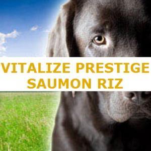 Aliment complet pour chien adulte aux problèmes de peau - VITALIZE PRESTIGE SAUMON RIZ