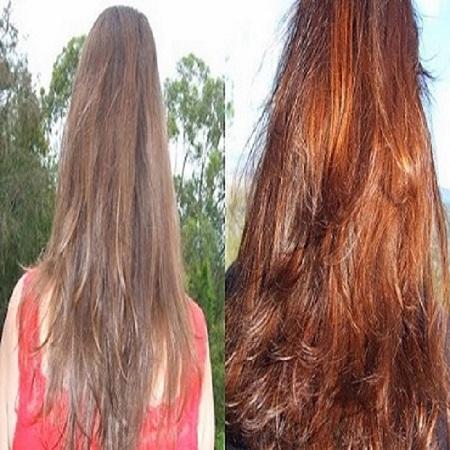 non allergic hair color dye  Organic based Hair dye henna Fo - hair7869430012018