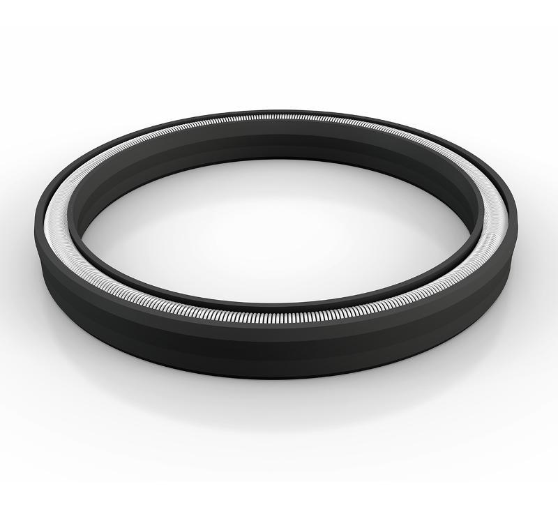 Rod Seals - Turcon® Variseal® W2