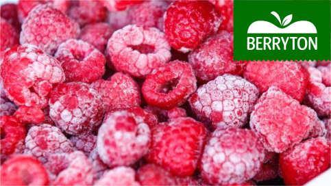 Frozen raspberry - IQF