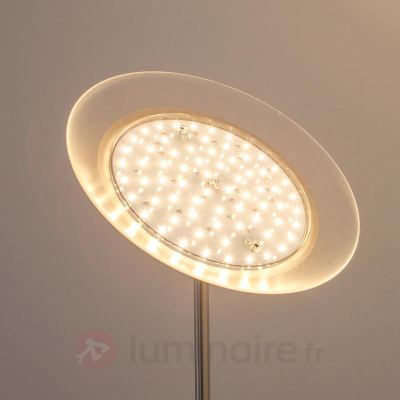 Talia - Lampadaire LED moderne + liseuse - Lampadaires LED à éclairage indirect