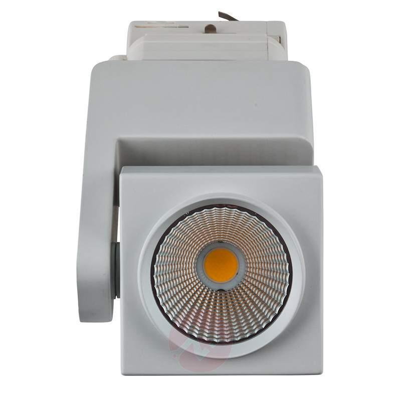 LED spotlight Canto for 3-circuit track cool white - 3-Phase Track