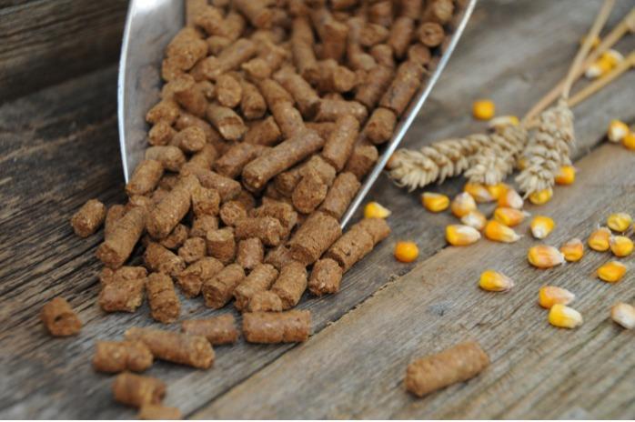 Animal Feed & Fertilizer -